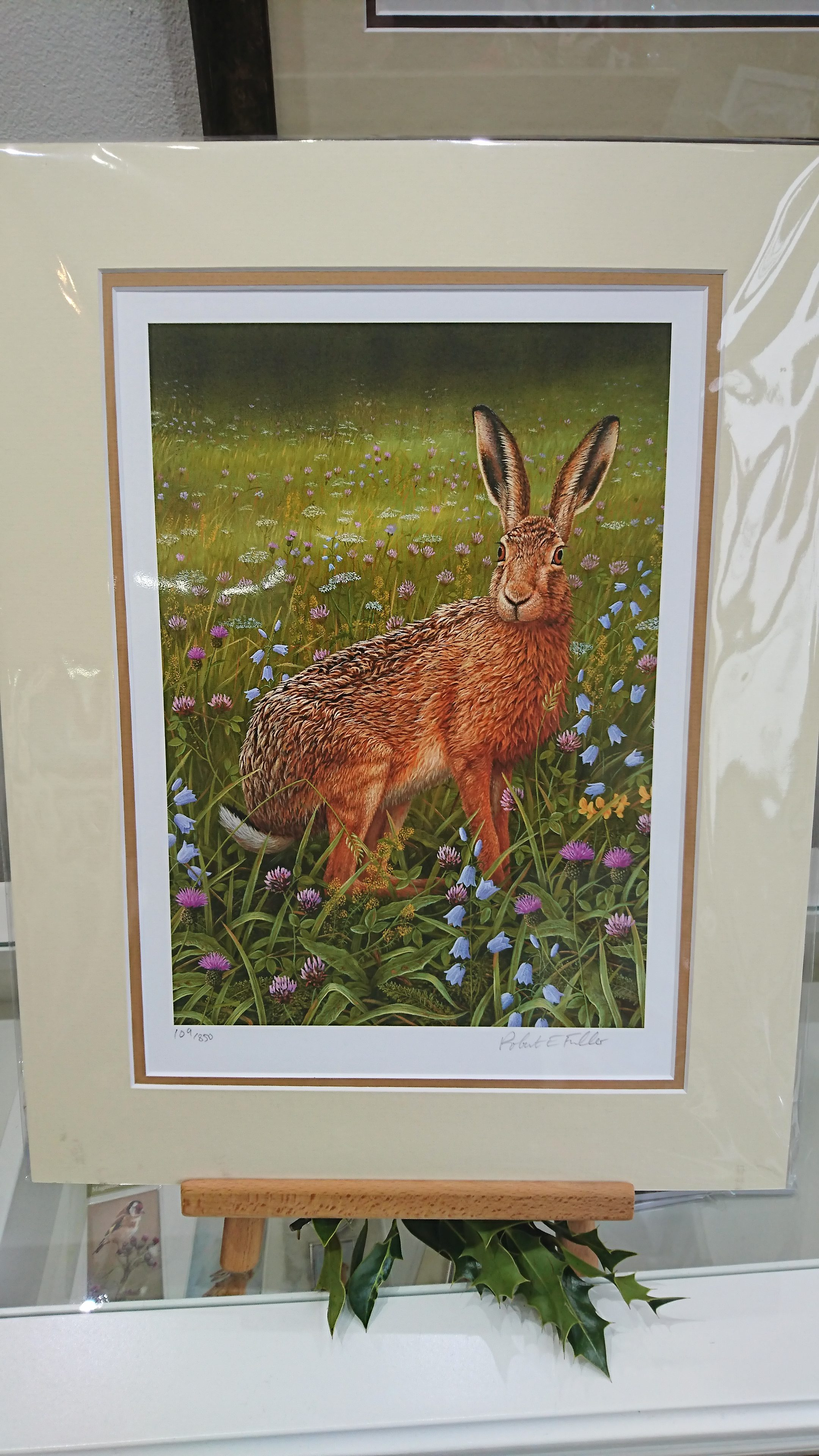 Hare in Wild Flowers