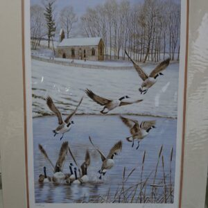Givendale Geese